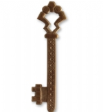 55x15mm Gate Key